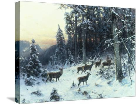 Deer in a Snowy Wooded Landscape-Arthur Julius Thiele-Stretched Canvas Print