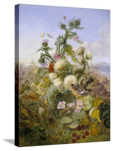 Nature's Glory-John Wainwright-Stretched Canvas Print