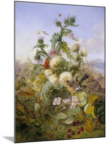Nature's Glory-John Wainwright-Mounted Giclee Print