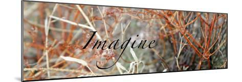 Imagine: Colorful Brush-Nicole Katano-Mounted Photo
