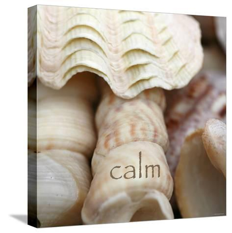 Calm-Nicole Katano-Stretched Canvas Print