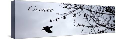 Create-Nicole Katano-Stretched Canvas Print