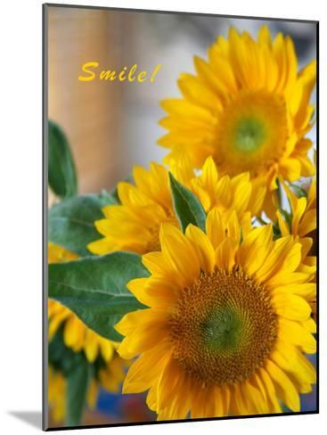 Smile: Sunny Sunflower-Nicole Katano-Mounted Photo