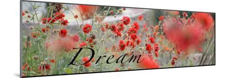 Dream Flowers II-Nicole Katano-Mounted Photo