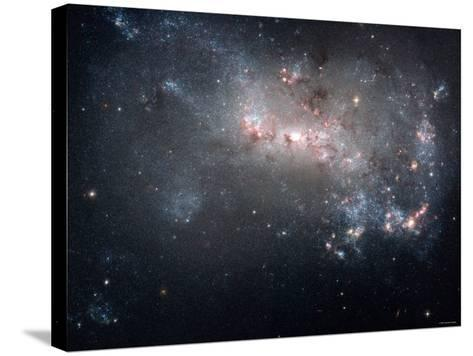 Magellanic Dwarf Irregular Galaxy NGC 4449 in the Constellation Canes Venatici-Stocktrek Images-Stretched Canvas Print