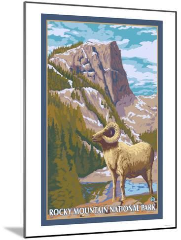 Big Horn Sheep, Rocky Mountain National Park-Lantern Press-Mounted Art Print