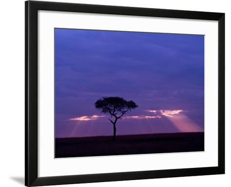 Sunrise, Maasai Mara, Kenya-Joe Restuccia III-Framed Art Print