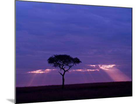 Sunrise, Maasai Mara, Kenya-Joe Restuccia III-Mounted Photographic Print