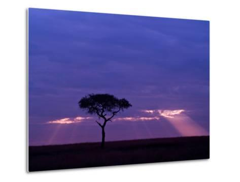 Sunrise, Maasai Mara, Kenya-Joe Restuccia III-Metal Print