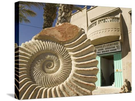Fossil Shop, Erfoud, Ziz Valley, Morocco-Walter Bibikow-Stretched Canvas Print