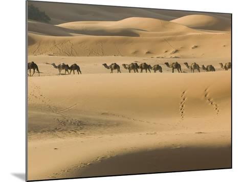 Camel Caravan on the Erg Chebbi Dunes, Merzouga, Tafilalt, Morocco-Walter Bibikow-Mounted Photographic Print