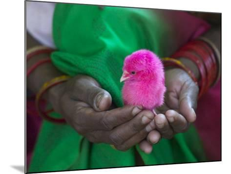 Woman and Chick Painted with Holy Color, Orissa, India-Keren Su-Mounted Photographic Print
