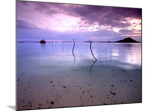 Electricity Cable Supplying Stilt House off Remote Island, Lesser Sunda Archipelago, Indonesia-Jay Sturdevant-Mounted Photographic Print