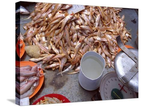 Grenadier Anchovies for Sale in Market, Malaysia-Jay Sturdevant-Stretched Canvas Print