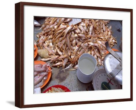Grenadier Anchovies for Sale in Market, Malaysia-Jay Sturdevant-Framed Art Print