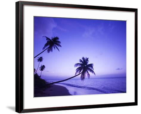Lone Palm Trees at Sunset, Coconut Grove Beach at Cade's Bay, Nevis, Caribbean-Greg Johnston-Framed Art Print