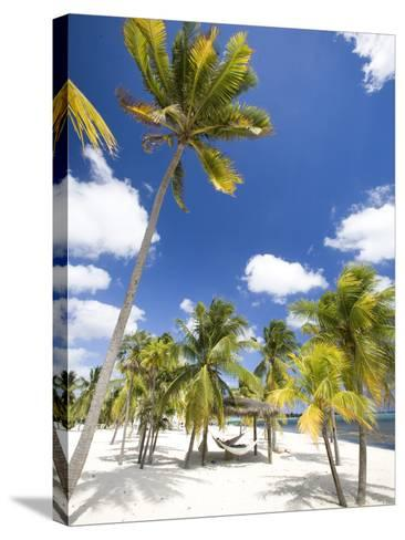 Southern Cross Club, Little Cayman, Cayman Islands, Caribbean-Greg Johnston-Stretched Canvas Print