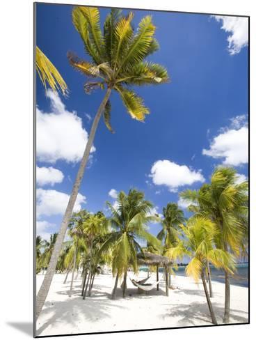 Southern Cross Club, Little Cayman, Cayman Islands, Caribbean-Greg Johnston-Mounted Photographic Print