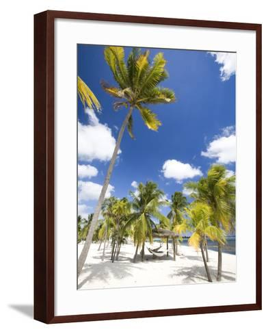 Southern Cross Club, Little Cayman, Cayman Islands, Caribbean-Greg Johnston-Framed Art Print