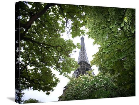 Detail of Eiffel Tower, Paris, France-Jim Zuckerman-Stretched Canvas Print