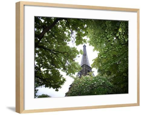 Detail of Eiffel Tower, Paris, France-Jim Zuckerman-Framed Art Print
