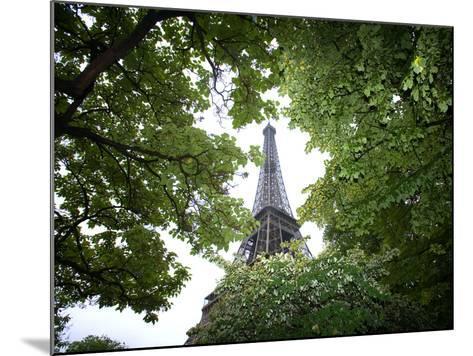 Detail of Eiffel Tower, Paris, France-Jim Zuckerman-Mounted Photographic Print