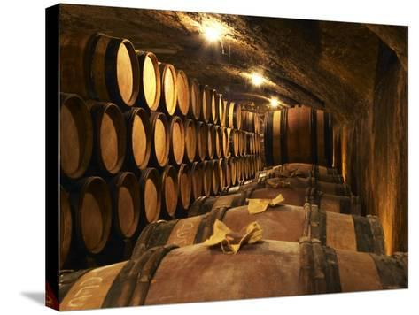Wooden Barrels with Aging Wine in Cellar, Domaine E Guigal, Ampuis, Cote Rotie, Rhone, France-Per Karlsson-Stretched Canvas Print