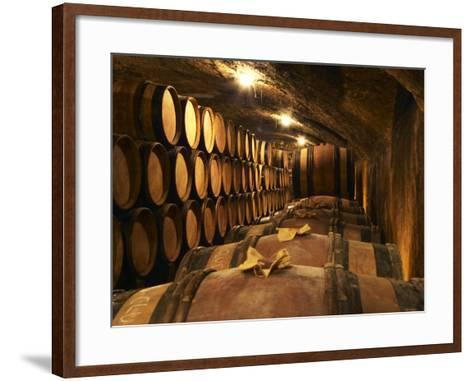 Wooden Barrels with Aging Wine in Cellar, Domaine E Guigal, Ampuis, Cote Rotie, Rhone, France-Per Karlsson-Framed Art Print