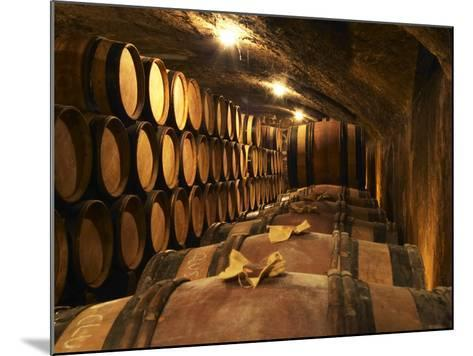 Wooden Barrels with Aging Wine in Cellar, Domaine E Guigal, Ampuis, Cote Rotie, Rhone, France-Per Karlsson-Mounted Photographic Print