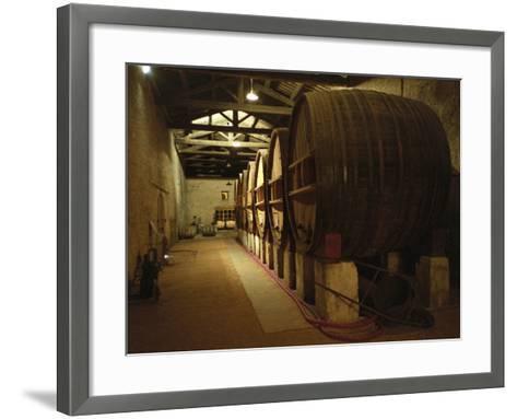 Fermentation Vats in Winery, Domaine Saint Martin De La Garrigue, Montagnac-Per Karlsson-Framed Art Print