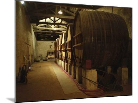 Fermentation Vats in Winery, Domaine Saint Martin De La Garrigue, Montagnac-Per Karlsson-Mounted Photographic Print