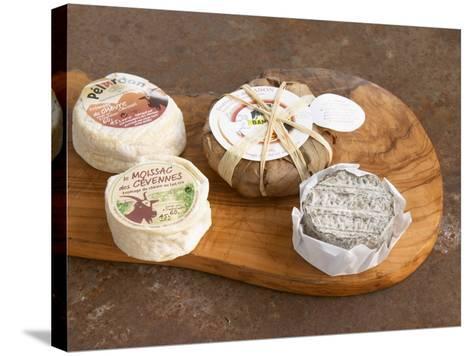 French Goat Cheese, Clos Des Iles, Le Brusc, Cote d'Azur, Var, France-Per Karlsson-Stretched Canvas Print