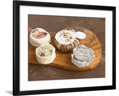 French Goat Cheese, Clos Des Iles, Le Brusc, Cote d'Azur, Var, France-Per Karlsson-Framed Art Print