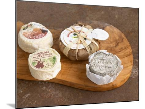 French Goat Cheese, Clos Des Iles, Le Brusc, Cote d'Azur, Var, France-Per Karlsson-Mounted Photographic Print