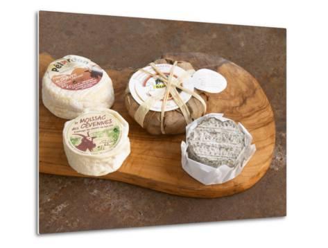 French Goat Cheese, Clos Des Iles, Le Brusc, Cote d'Azur, Var, France-Per Karlsson-Metal Print