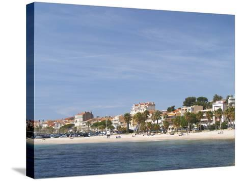 Beach with Palm Trees Along Coast in Bandol, Cote d'Azur, Var, France-Per Karlsson-Stretched Canvas Print