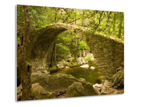 Genoan Bridge in Vegetation of Gorges De Spelonca, Ponte De Zaglia, Corsica, France-Trish Drury-Metal Print
