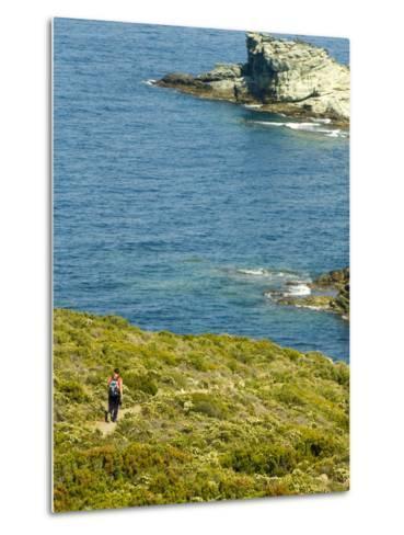 Blooming Maquis Along Rugged Mediterranean Coastline, Le Sentier Des Douaniers, Cap Corse-Trish Drury-Metal Print