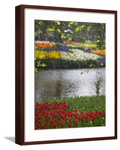 Tulips in Keukenhof Gardens, Amsterdam, Netherlands-Keren Su-Framed Art Print