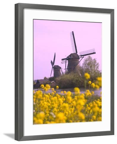 Windmills Along the Canal in Kinderdijk, Netherlands-Keren Su-Framed Art Print
