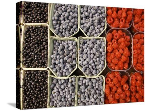 Different Berries at the Outdoor Market, Stockholm, Sweden-Nancy & Steve Ross-Stretched Canvas Print