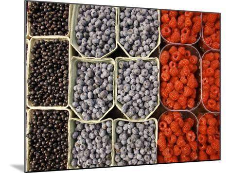 Different Berries at the Outdoor Market, Stockholm, Sweden-Nancy & Steve Ross-Mounted Photographic Print
