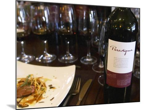 Gourmet Food and Wine Tasting, Argentina-Per Karlsson-Mounted Photographic Print