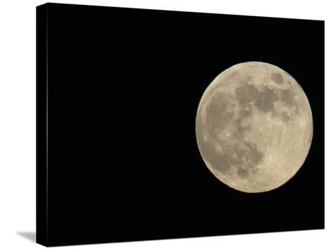 Full Moon-Arthur Morris-Stretched Canvas Print