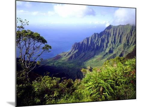View Above the Na Pali Coast, Kauai, Hawaii, USA-Christopher Talbot Frank-Mounted Photographic Print