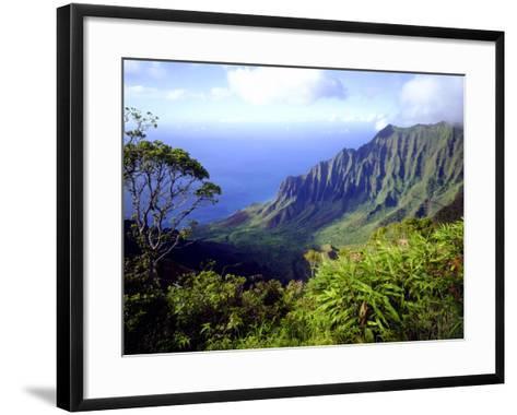 View Above the Na Pali Coast, Kauai, Hawaii, USA-Christopher Talbot Frank-Framed Art Print