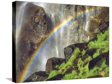 Rainbow at the Base of Bridal Veil Falls, Yosemite National Park, California, USA-Christopher Talbot Frank-Stretched Canvas Print