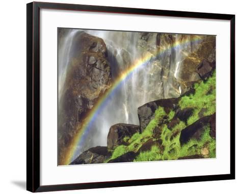Rainbow at the Base of Bridal Veil Falls, Yosemite National Park, California, USA-Christopher Talbot Frank-Framed Art Print