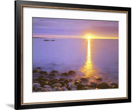 Sunrise on Fog and Shore Rocks on the Atlantic Ocean, Acadia National Park, Maine, USA-Christopher Talbot Frank-Framed Art Print