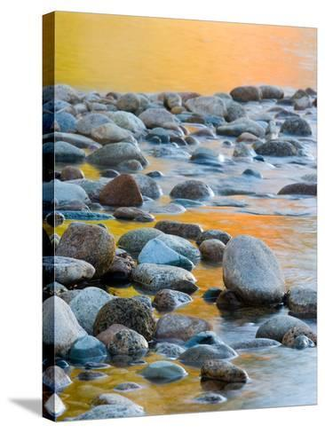 Fall Reflections Among the Cobblestones in the Saco River, White Mountains, New Hampshire, USA-Jerry & Marcy Monkman-Stretched Canvas Print